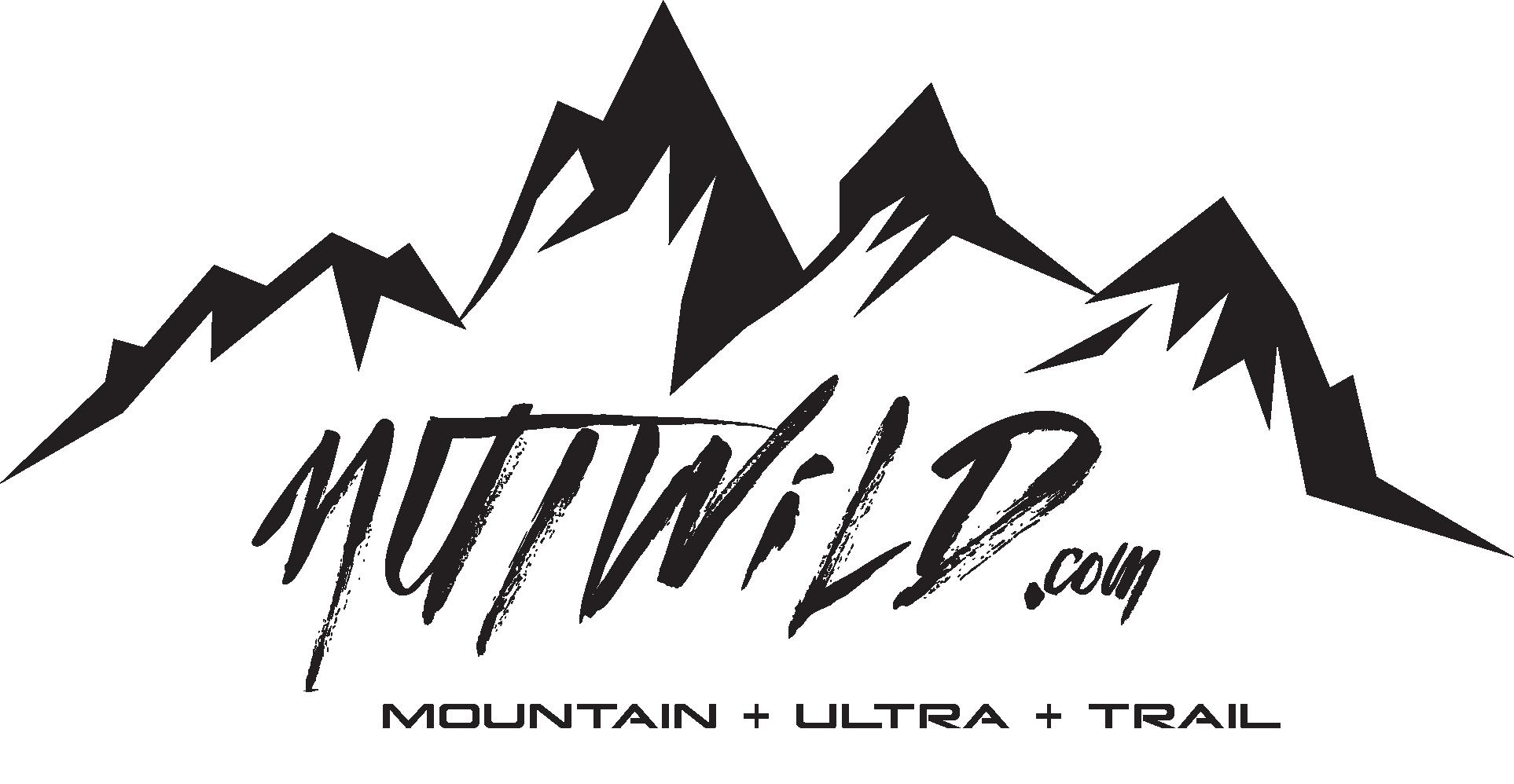 mountain logo transparent
