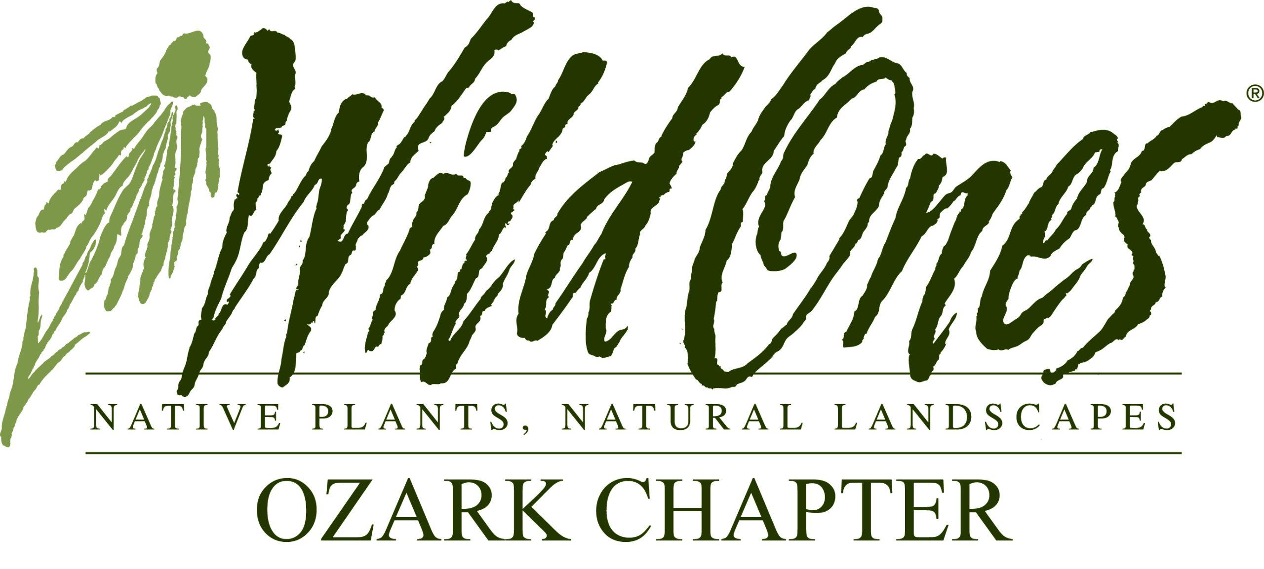 Wild Ones - Ozark Chapter logo